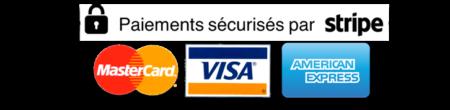 paiement-securise_stripe_plat